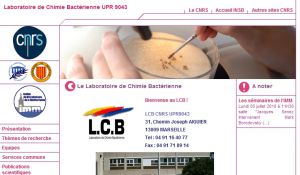 Site Officiel lcb cnrs-mrs fr